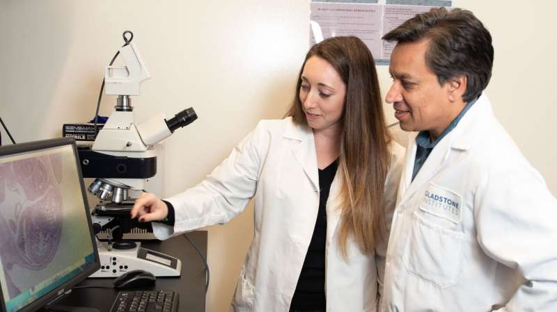 Combination of three gene mutations results in deadly human heart disease