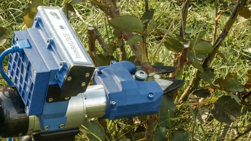 Cutting-edge robot makes short work of gardening chores