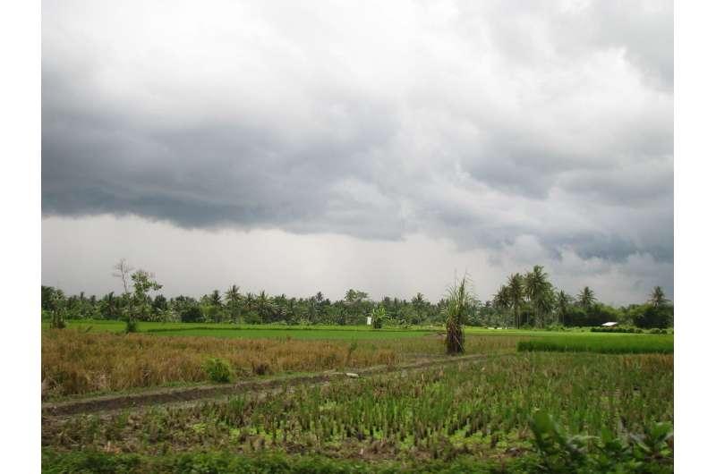 Daily rainfall over Sumatra linked to larger atmospheric phenomenon