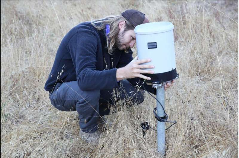 Does limited underground water storage make plants less susceptible to drought?