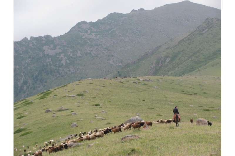 Earliest spread of millet agriculture outside China linked to herding livestock
