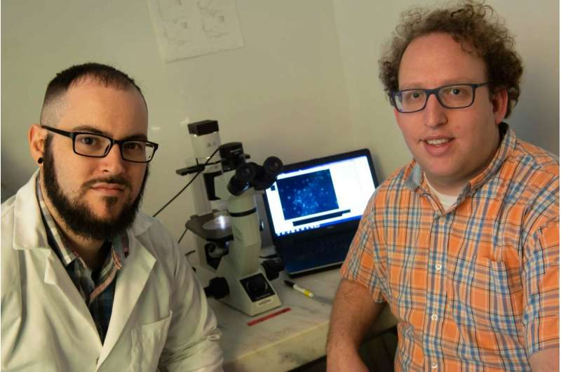 Embryos' signaling proteins go with the flow