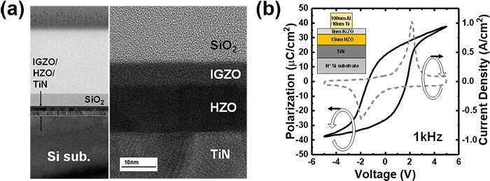 Emerging device by the fusion of IGZO and ferroelectric-HfO2