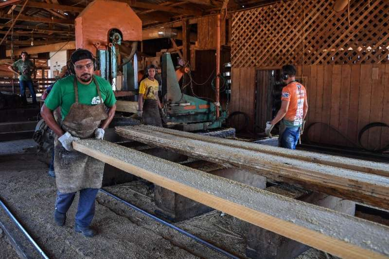Employees work at the Serra Mansa logging and sawmill company in Moraes Almeida