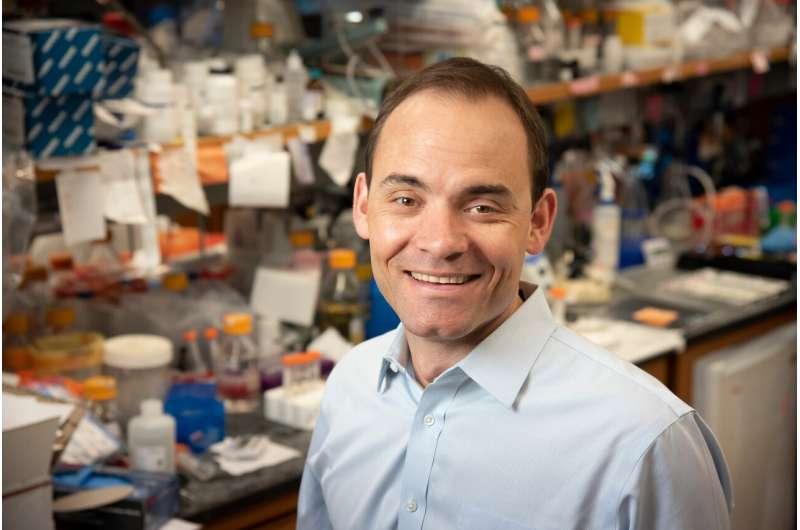 Engineering 'hairpins' increases CRISPR accuracy