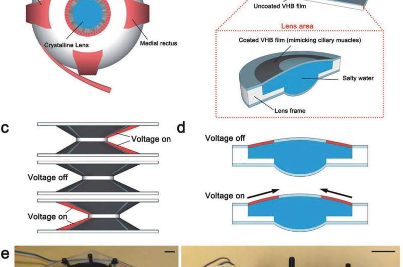 Eye-controlled soft lens paves way to soft human-machine interfaces