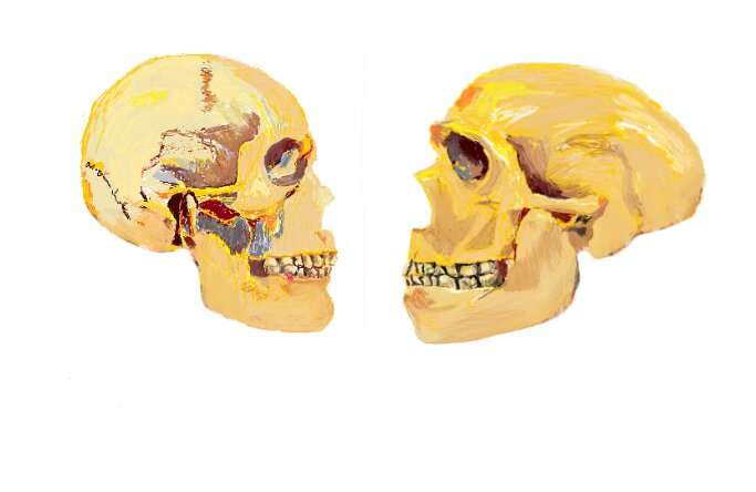 First experimental genetic evidence of the human self-domestication hypothesis