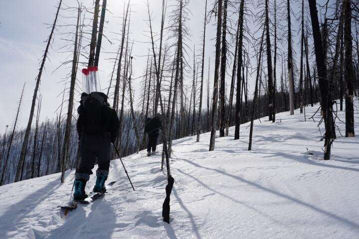 Forest fires accelerating snowmelt across western US, study finds