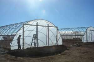 Fortified 'high tunnel' growing structures withstand 'bomb cyclone' winds