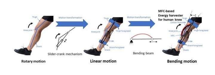 Harvesting energy from the human knee