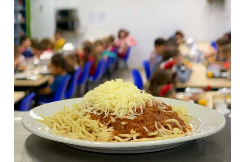 Introducing meat analogues to school catering: an instant hit?