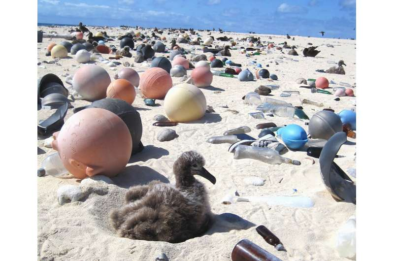 Millions of tons of plastic waste could be turned into clean fuels, other products