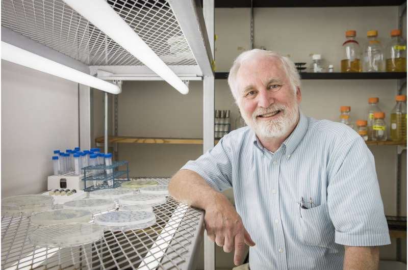 Missing link in algal photosynthesis found, offers opportunity to improve crop yields
