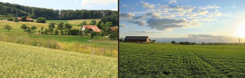 New pathways for sustainable agriculture