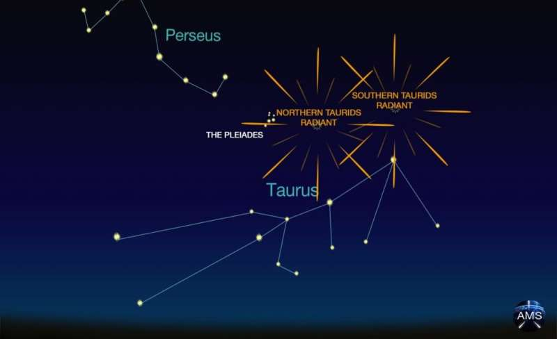 November Meteors: Taurids, Leonids and a Surprise Monocerotids Outburst