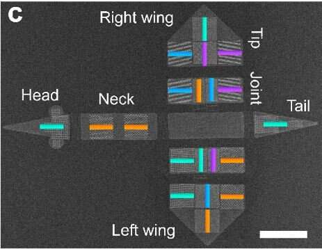 On the way to intelligent microrobots