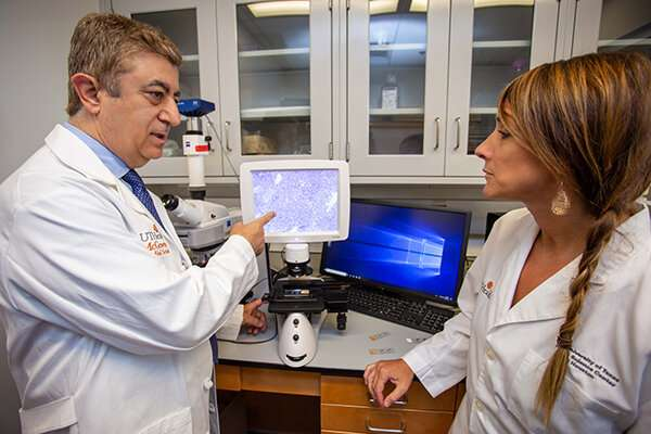 Preclinical research helps explain why fatty livers are more susceptible to cancer
