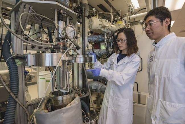Science snapshots -- Waste to fuel, moire superlattices, mining cellphones for energy data