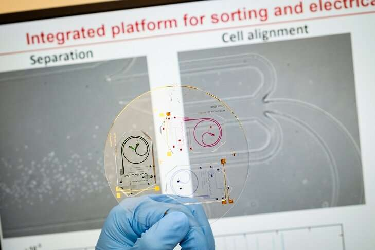 Scientists build chip to analyse health of white blood cells