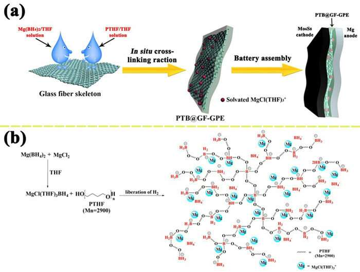 Scientists exploit gel polymer electrolyte for high performance magnesium batteries