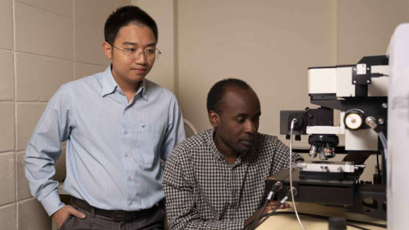 Scientists unlock the potential of ultra-thin 2-D materials