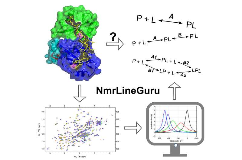 Site search: A digital approach to proteins and cancer