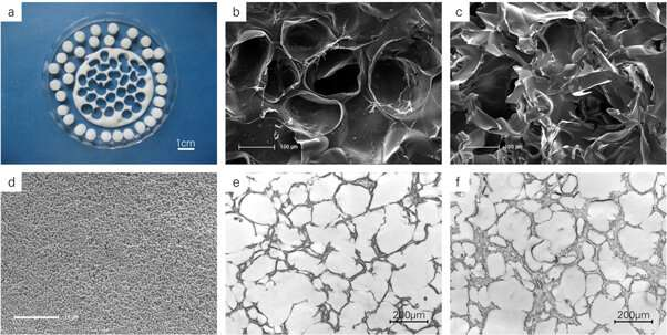 Stimulating the differentiation of bone precursors with organically modified hydroxyapatite (ormoHAP) nanospheres