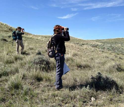 UM student research tests ways to reduce errors in wildlife surveys