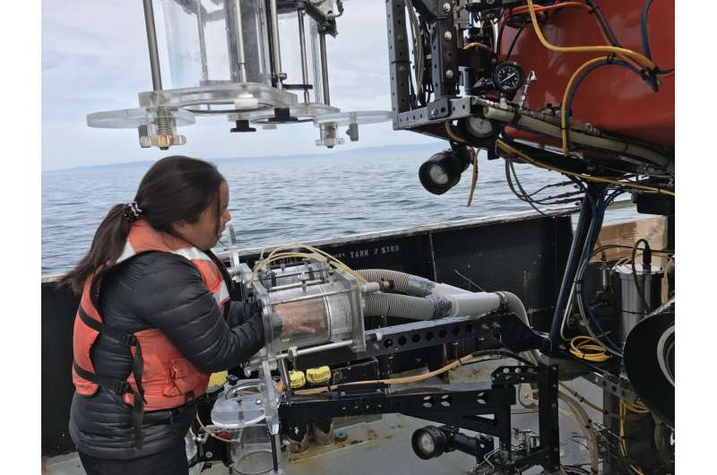 New study finds microplastic throughout Monterey Bay
