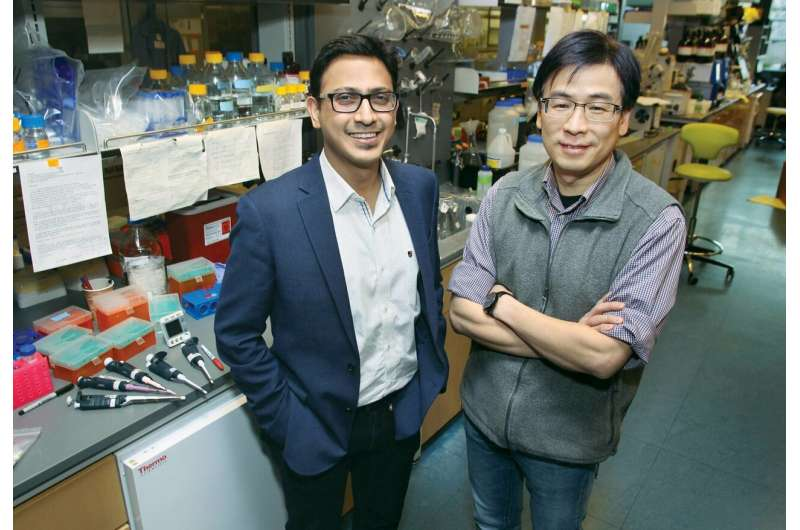 New technology marks a key step toward shrinking a medical lab to fit on fingertip