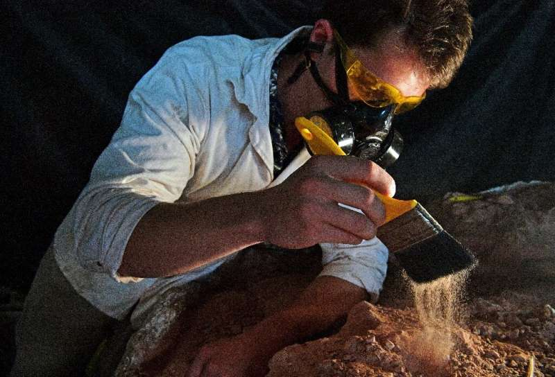 Paleontologist Rodrigo Temp Muller examines a dinosaur fossil at a research center in Sao Joao do Polesine, Brazil—the town is a