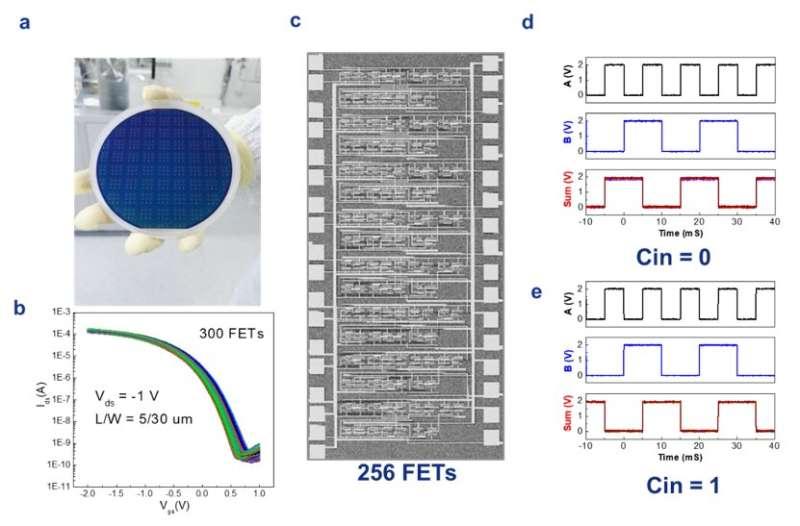 Study highlights the potential of nanotube digital electronics