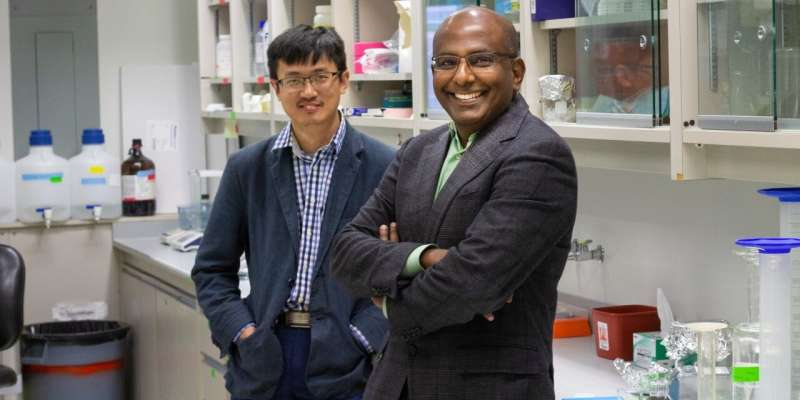 Researchers developing new treatment that could help protect people with cardiovascular disease