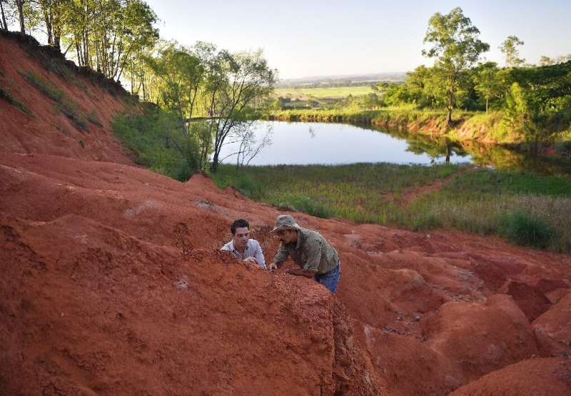 Paleontologists Rodrigo Temp Muller (L) and Jose Darival Ferreira examine a newly found fossil at a dig site in Agudo, Brazil