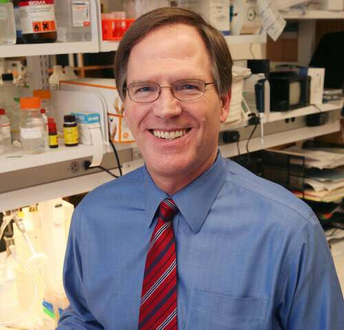 Researchers learn how 'bad cholesterol' enters artery walls