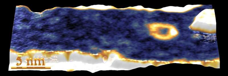 Researchers observe spontaneous occurrence of skyrmions in atomically thin cobalt films