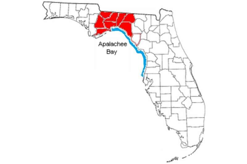 Rising seas threaten hundreds of Native American heritage sites along Florida's Gulf Coast
