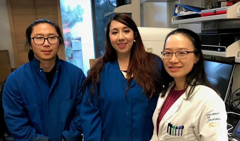 Scientists identify genetic mechanism involved in how females inherit traits