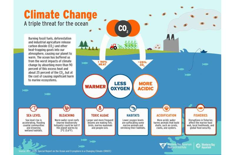 Climate change and the ocean