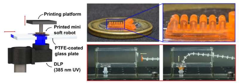 Researchers develop process flow for high-res 3D printing of mini soft robotic actuators