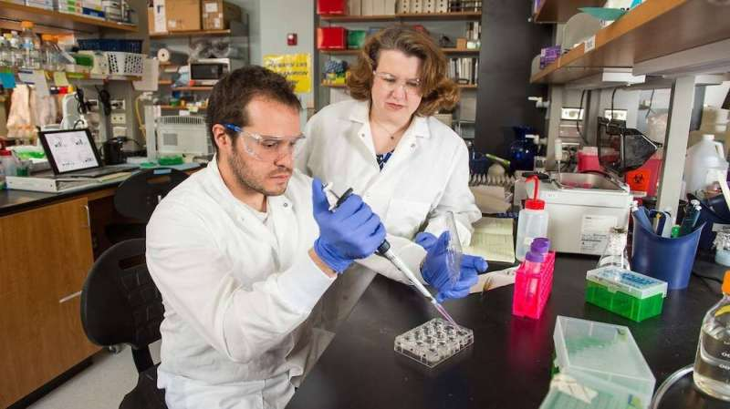 Researchers discover critical process for how breast cancer spreads in bones