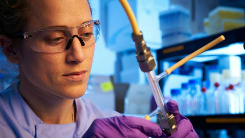 Researchers using tissue engineering to create lab-grown meat