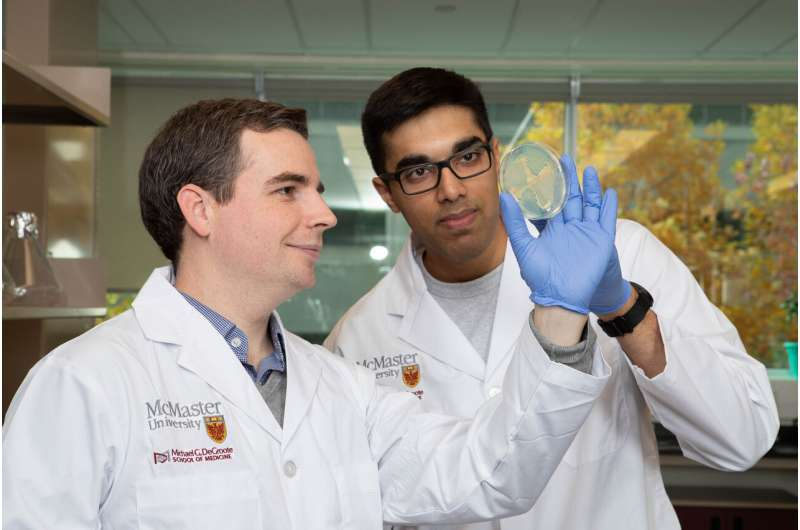 Researchers discover new toxin that impedes bacterial growth