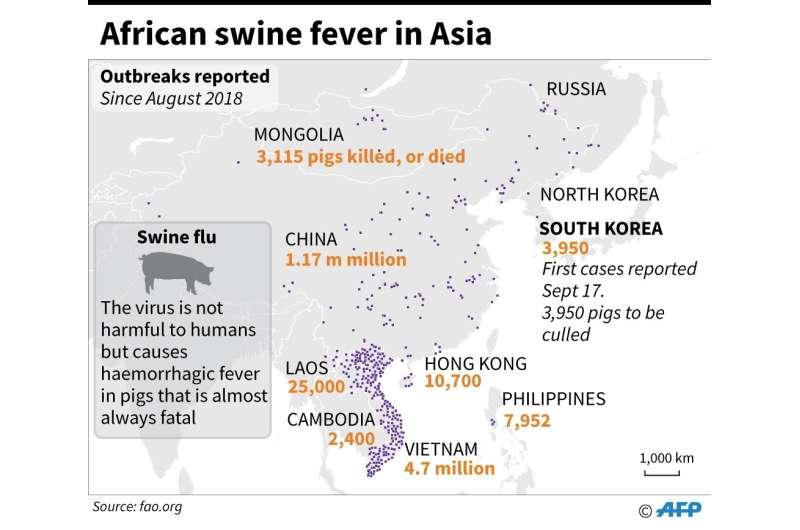African swine fever in Asia