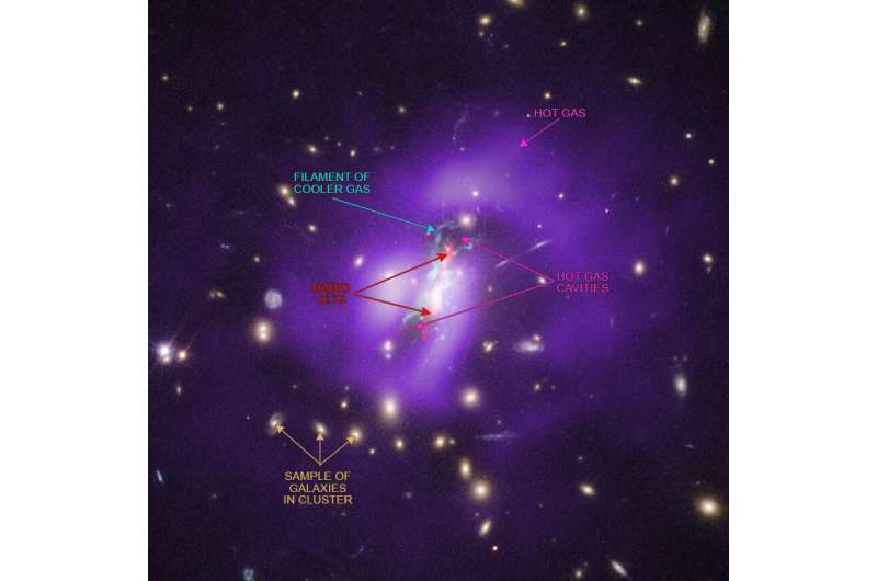 Blowtorch jets from a black hole drive starbirth