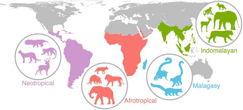 Connecting the prehistoric past to the global future