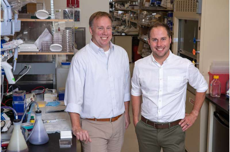 Discovery of how colorectal cancer drug works will help more patients