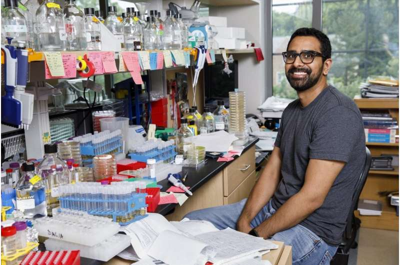 DNA-reeling bacteria yield new insight on how superbugs acquire drug-resistance