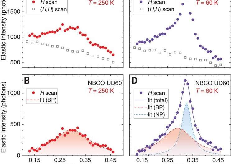 Dynamic charge density fluctuations pervading the phase diagram of a Cu-based high-Tc superconductor.