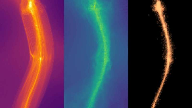 New 'fuzzy' dark matter research disrupts conventional thinking